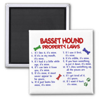 BASSET HOUND Property Laws 2 2 Inch Square Magnet