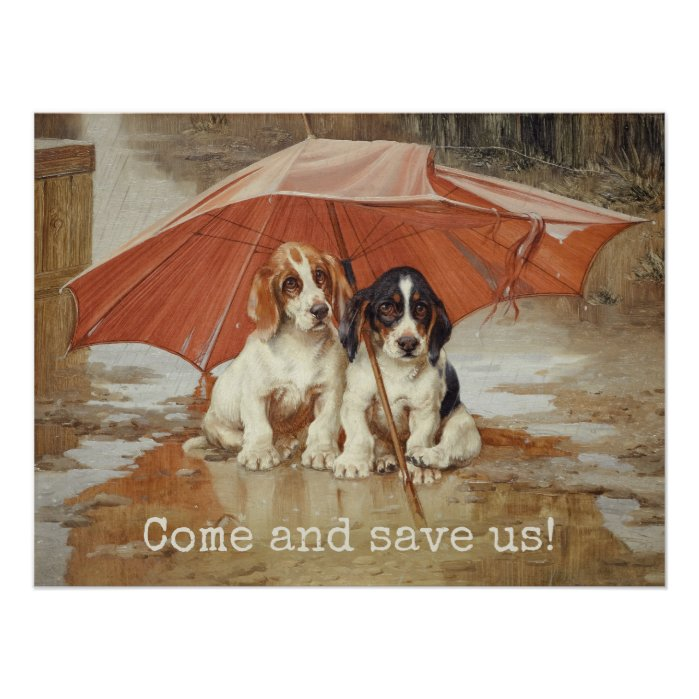 Basset hound puppies under umbrella CC0867 Trood Poster