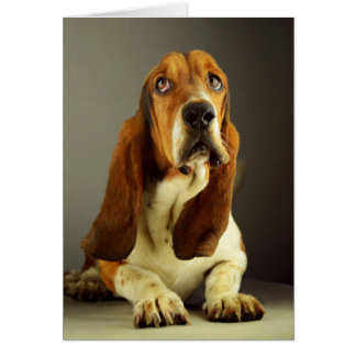 Basset Hound Puppy Dog Blank Note Card