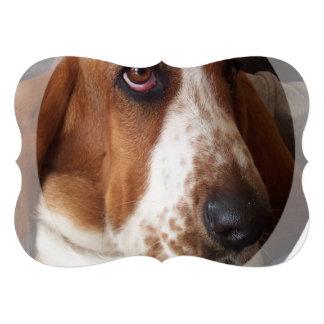 Basset Hound Puppy Invitation