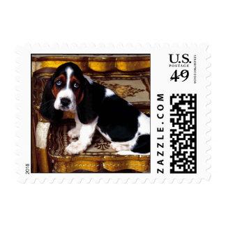 Basset Hound Puppy Postage