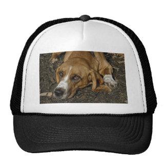 Basset Hound Rescue Dog Mable Trucker Hat
