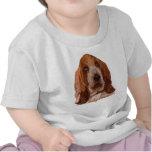 Basset Hound T-Shirts and Cap