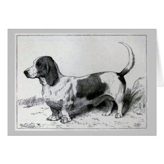 """Basset Hound"" Vintage Dog Illustration Card"