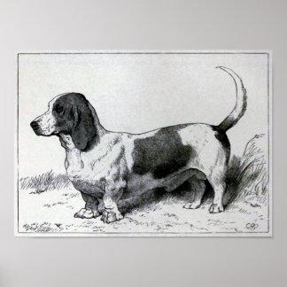 """""""Basset Hound"""" Vintage Dog Illustration Poster"""
