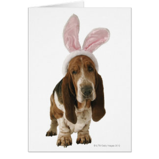 Basset hound with bunny ears card