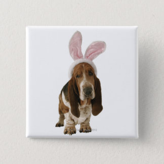 Basset hound with bunny ears pinback button