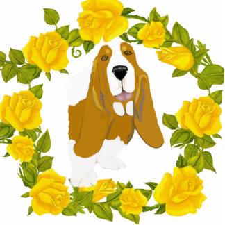 Basset Hound y rosas amarillos