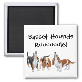 Basset Hounds Rule Magnet