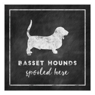 Basset Hounds Spoiled Here Poster