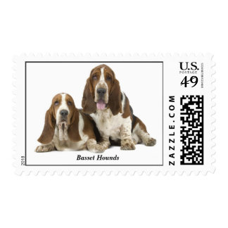 Basset Hounds Stamp