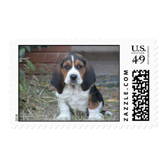 basset puppy stamps