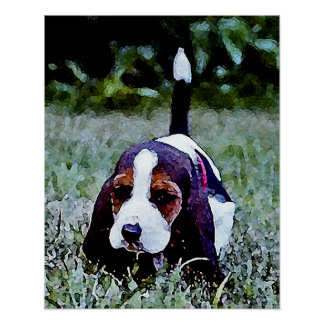 Basset Puppy Walking - Black Brown White Poster