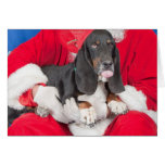 Basset Sticking Tongue Out on Santa's Lap Greeting Cards