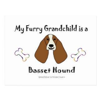 BassetHound Postcard