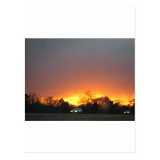 Bastrop Fire Postcard