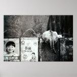 Basura y gato posters