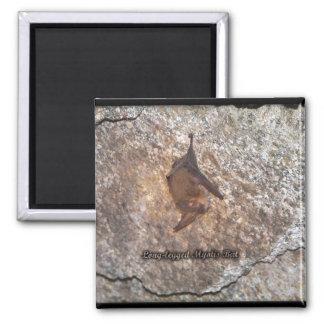 bat cave refrigerator magnets