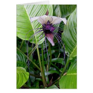 Bat Flower Card