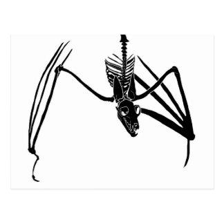 Bat Skeleton Postcard