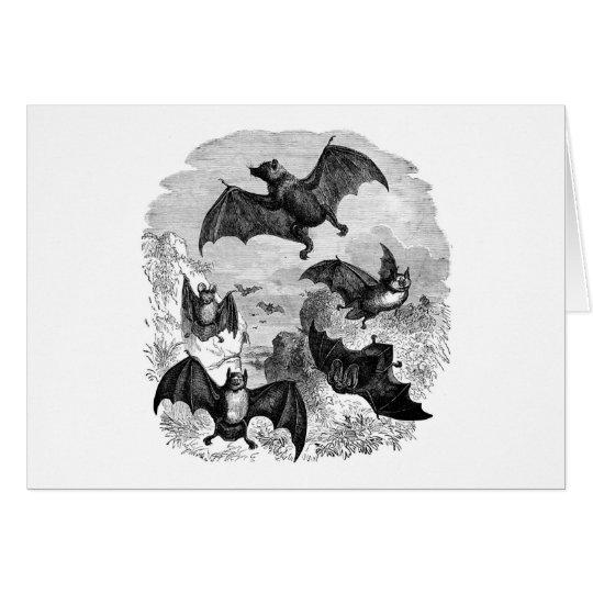 Bat Sketch Card