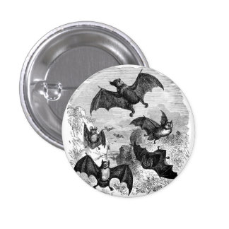 Bat Sketch Pinback Button