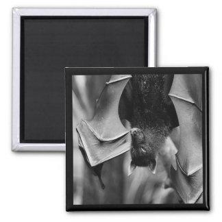 Bat Wings Gothic Punk Magnet