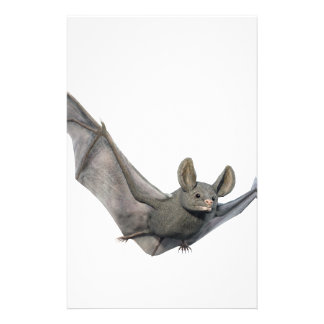 Bat with wings on the upstroke stationery