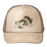 Batalla del hilado con el gatito y el gato gorra