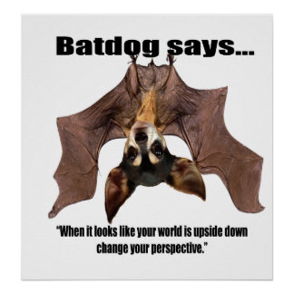 Batdog says when it looks like your world is... poster