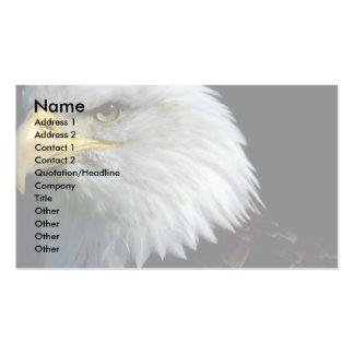 Bateleur Eagle Business Card