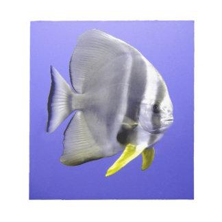 Batfish tropical exotic fish underwater notepad