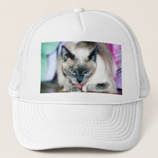 Bath 4 Harmony Hat