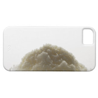 Bath Salt iPhone SE/5/5s Case