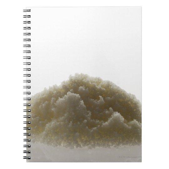 Bath Salt Notebook