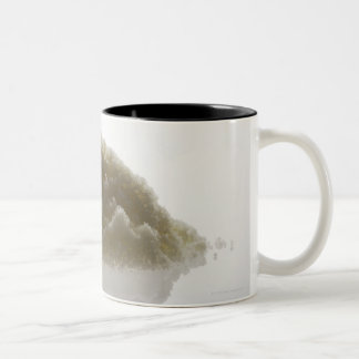 Bath Salt Two-Tone Coffee Mug