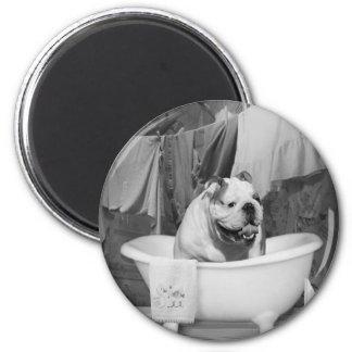 Bath time big fellow magnet