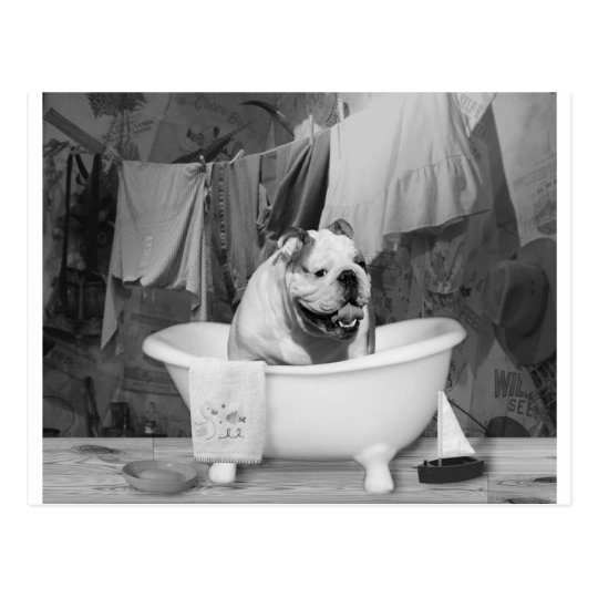 Bath time big fellow postcard