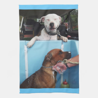 Bath time for Barnsy and Homer J Mojo Kitchen Towe Towels