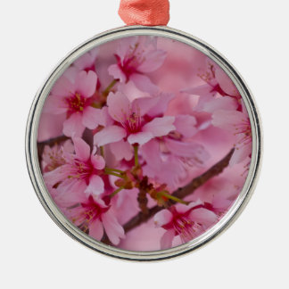 Bathed in Pink Japanese Cherry Blossoms Metal Ornament