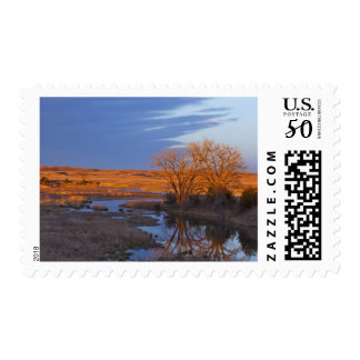 Bathed in sunset light the Calamus River Postage