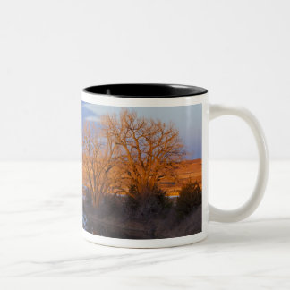 Bathed in sunset light the Calamus River Two-Tone Coffee Mug