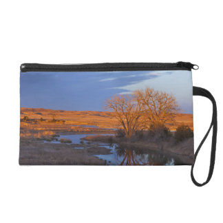 Bathed in sunset light the Calamus River Wristlet