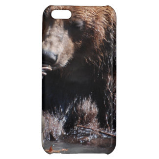 Bathing Bear Cover For iPhone 5C