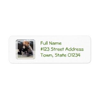 Bathing Bear Custom Return Address Labels