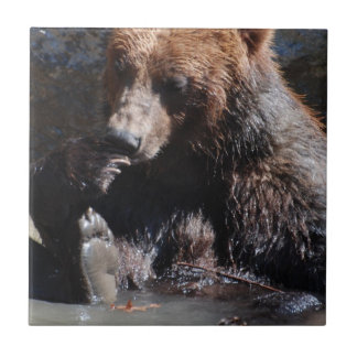 Bathing Bear Small Square Tile