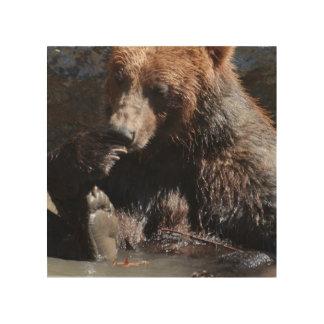 Bathing Bear Wood Wall Art