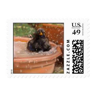Bathing Blackbird Postage Stamp