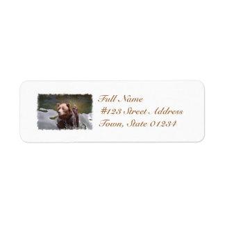Bathing Brown Bear Mailing Labels