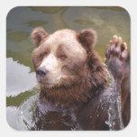 Bathing Brown Bear  Stickers